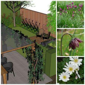 tuinontwerp voorjaar vanDoorenTUINEN.
