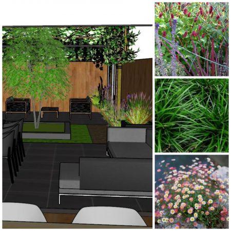 tuinontwerp kleine tuin 2 vanDoorenTUINEN