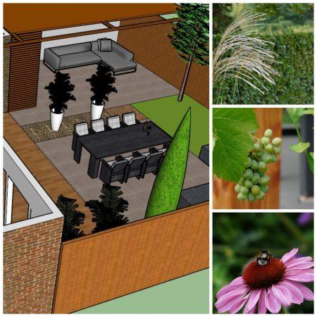tuinontwerp kleine tuin vanDoorenTUINEN